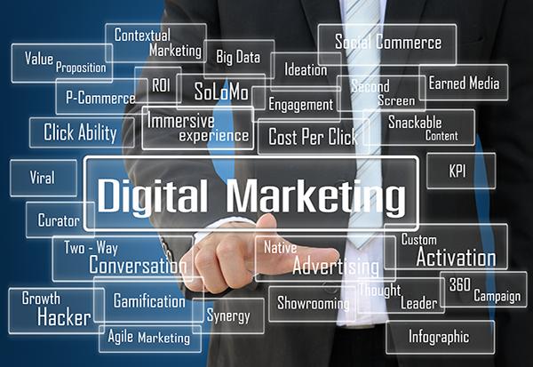 Mindshark-Digital Marketing